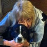 Teacher from Cumberland Gap | Woman | 62 years old | Gemini